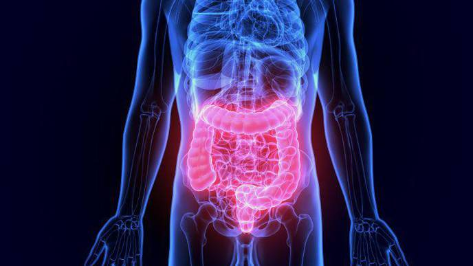 'Dead' Probiotic Treatment May Help Reduce Irritable Bowel Symptoms