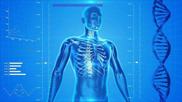Researchers Use Precision Medicine Strategy to Identify a New Genetic Skeletal Disorder