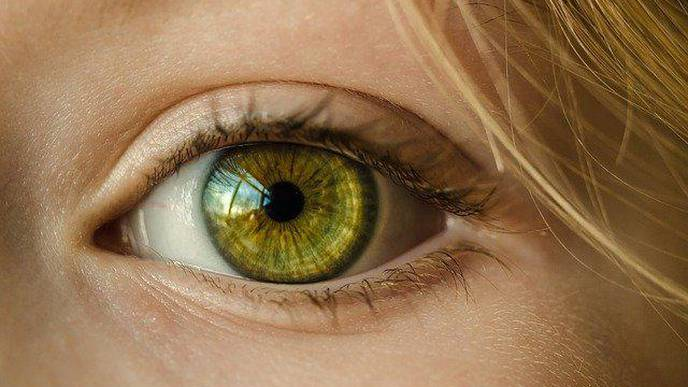 Vision Impairment Is Associated with Mortality