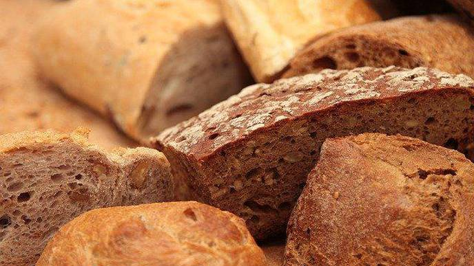 Gluten in Wheat: What Has Changed During 120 Years of Breeding?
