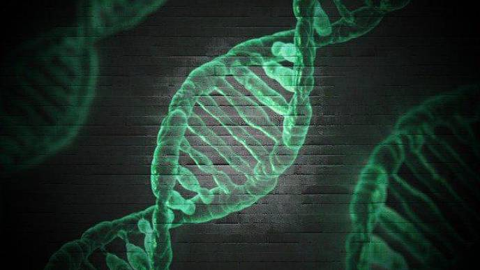 Innovative Gene Therapy 'Reprograms' Cells to Reverse Neurological Deficiencies