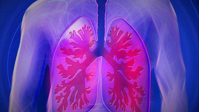 Pulmonary Embolism Prevalence Appears Lower in Hospitalized Patients with COPD