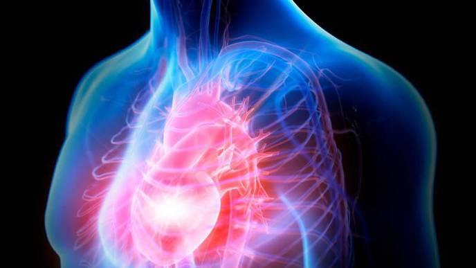Heart Failure Risks Start Young