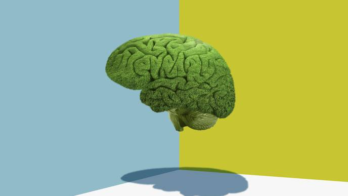 Confused About COVID Brain Fog? Doctors Have Questions, Too