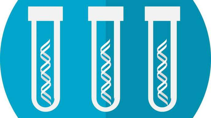 Genetic Test Could Pick Out 'Ultra High Risk' Bone Marrow Cancer Patients