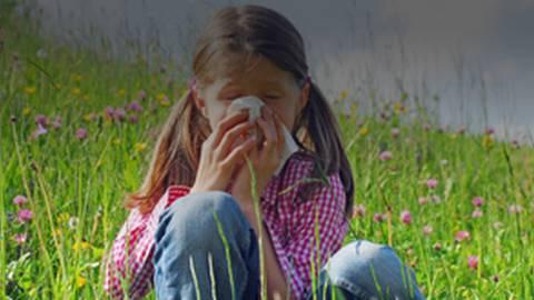 How to Combat Allergy Season's Sniffles & Sneezes
