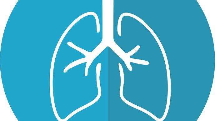 3D 'Lung-on-a-Chip' Model Developed to Test New Therapies for COVID-19 & Other Lung Conditions