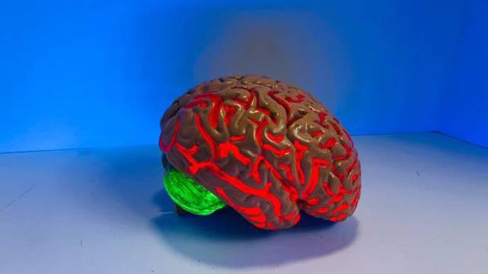 ALS Finding Links Blood & Brain