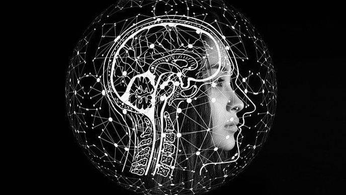 Study Reveals Immune Driver of Brain Aging