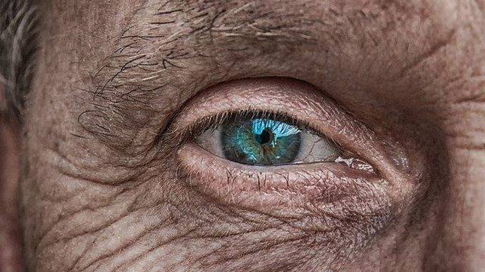 Gene Therapy Shows Promise in Treating Rare Eye Disease in Mice