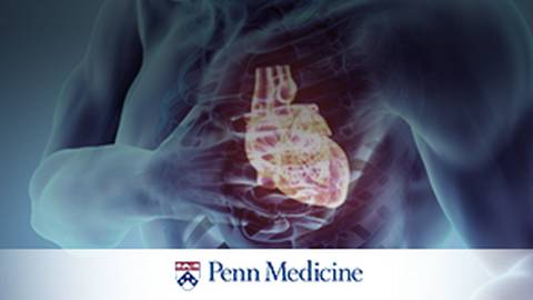Are VADs the Answer to the Heart Failure Epidemic?