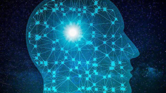How Neural Systems Process & Store Information