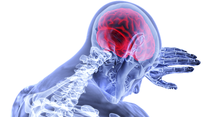 How Your Brain Creates Pain & What We Can Do About It