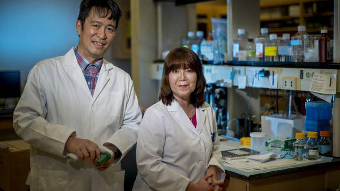 Copper Transporter Potential New Treatment Target for CVD