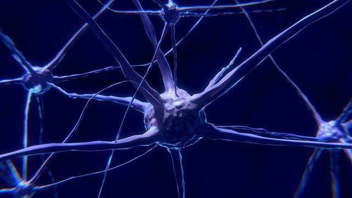 Function Identified of 'Mystery Protein' That Kills Healthy Brain Cells of People with Parkinson's