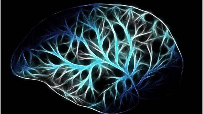 Scientists Identify Brain Cells Most Vulnerable to Alzheimer's Disease
