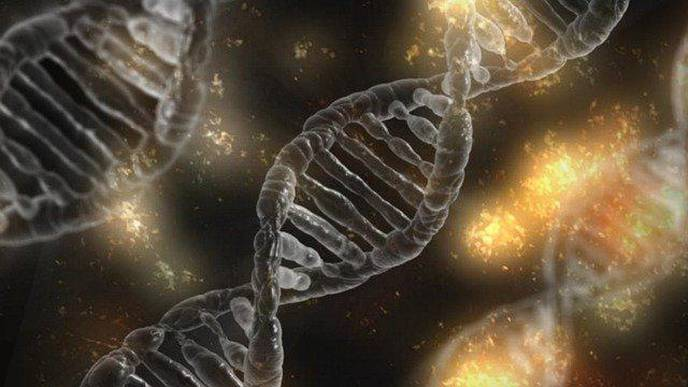 Researchers Discover How Chromosomal Instability Allows Cancer Cells to Avoid Immune Defenses