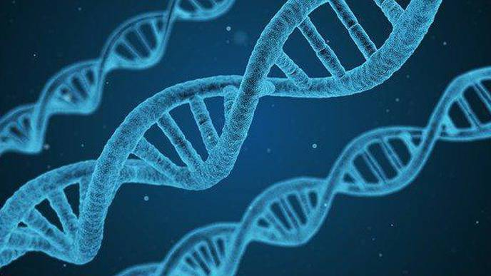 Multi-Gene Testing Could Detect More Hereditary Cancer Syndromes