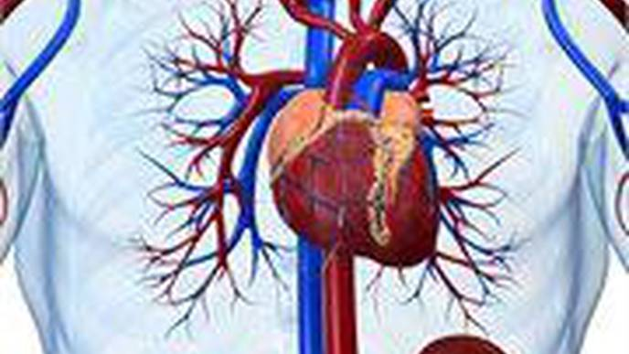 Black Patients Fare Worse After Angioplasty