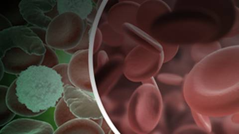 Rare Blood Disorders & Hemoglobinopathies: Updates on Diagnosis & Treatment in the Emergency Department