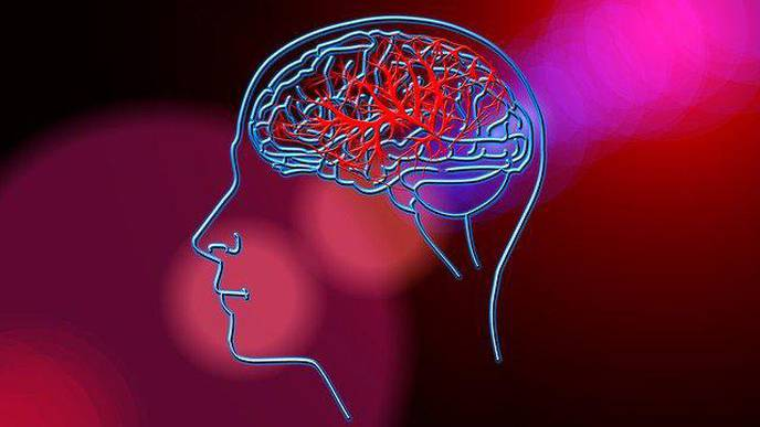 Could Leak in Blood-Brain Barrier Be Cause of Poor Memory?
