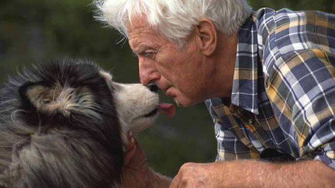 How Pets Can Be True Lifesavers for Seniors