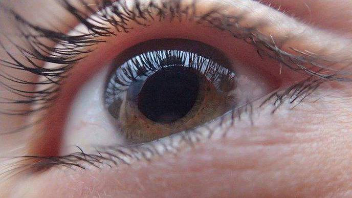 Common HIV Drugs May Prevent Major Cause of Blindness